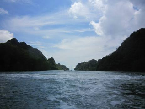 Another view of the mangrove trip in Langkawi (photo Nihal Sh)